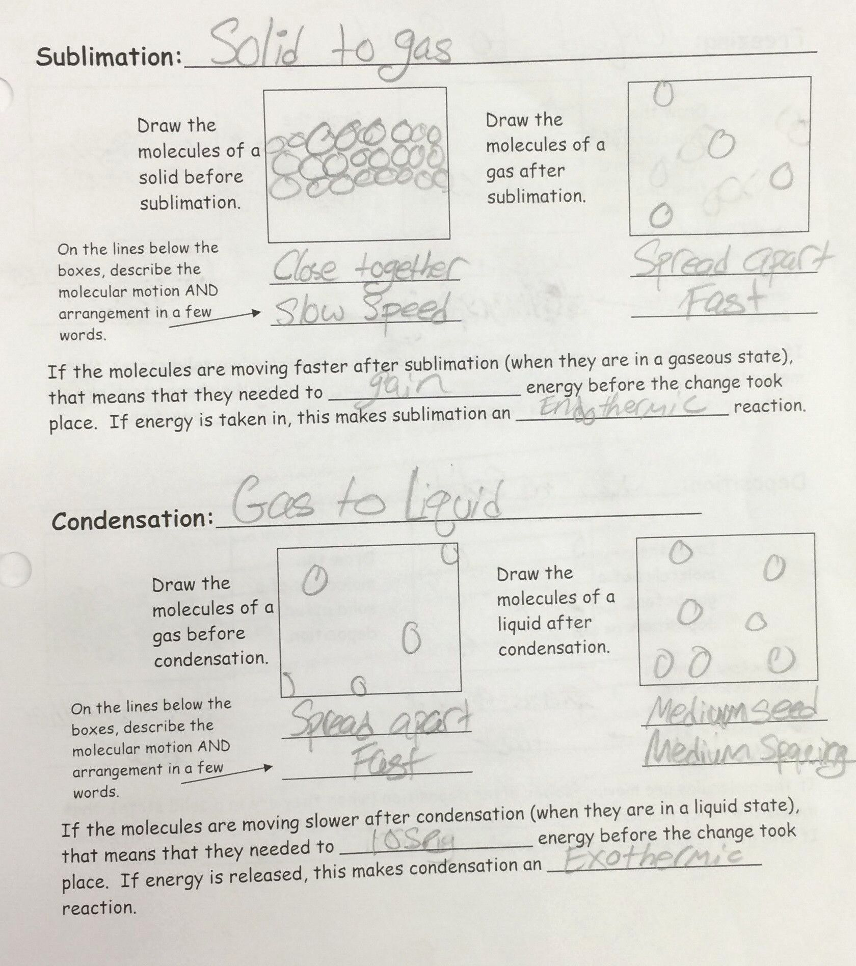Specific Heat Worksheet Answers Awesome Calculating