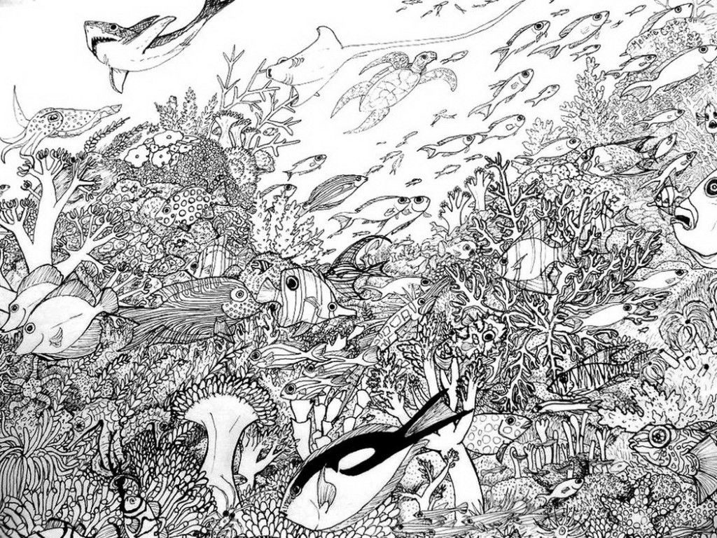 Coral Reef Creative Coloring Page