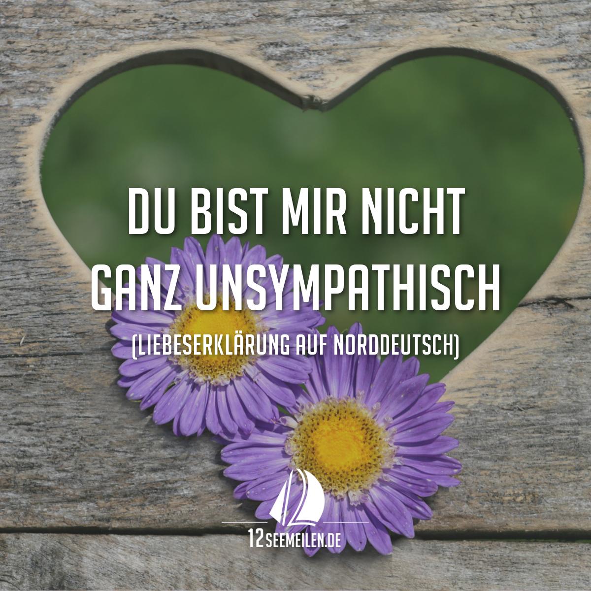 Du Bist Mir Nicht Ganz Unsympathisch. (Liebeserklärung Auf Norddeutsch) # Liebe #valentinstag