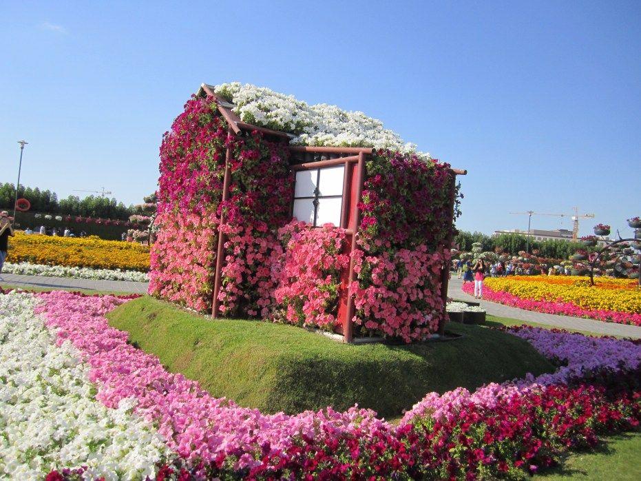 Dubai Miracle Garden Miracle garden, Dubai, Outdoor decor