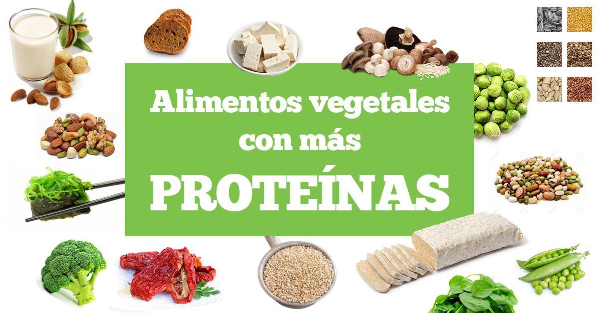 Alimentos Vegetales Con Más Proteínas Delantal De Alces Nutrición Ensaladas Con Proteina Alimentos