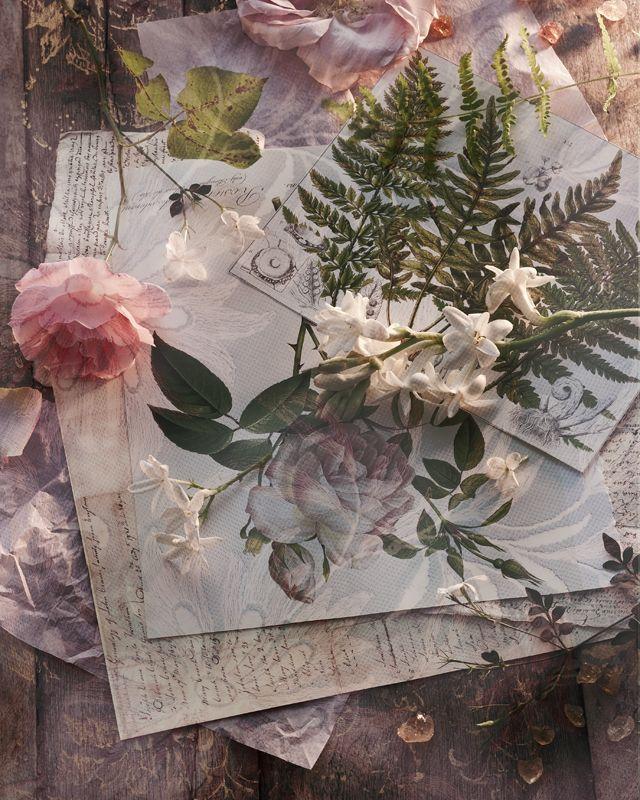 Jeroen van der Spek:::Flowers