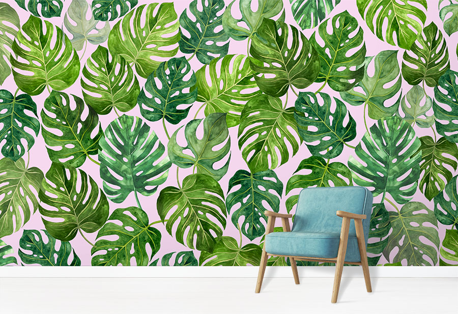 Monstera Wallpaper Tropical Jungle Leaf Wallcovering in