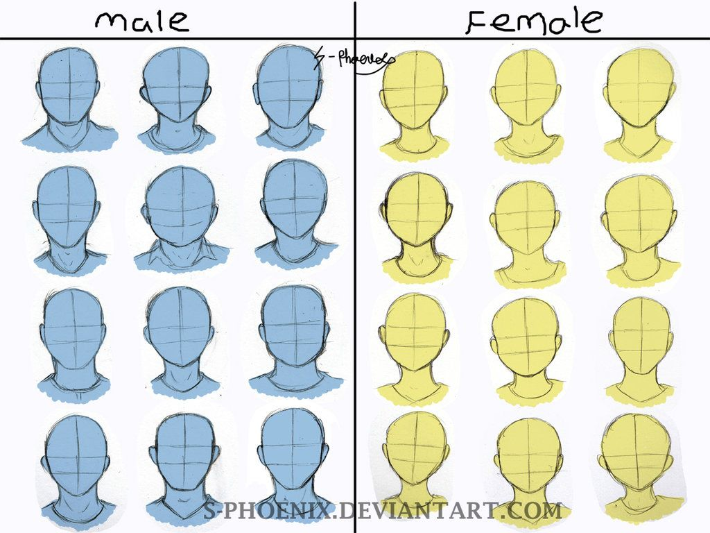 Male And Female Face Shape Reference By S Phoenix Deviantart Com On Deviantart Anime Face Shapes Drawing Face Shapes Female Face Drawing