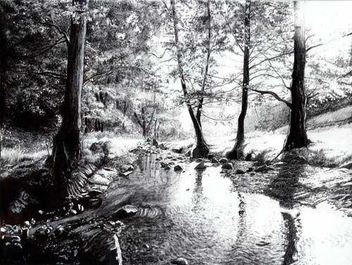 Gallery For > Simple Forest Drawing | Pencil drawings ...