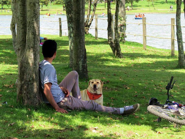 Resultado de imagen para descansando en parque
