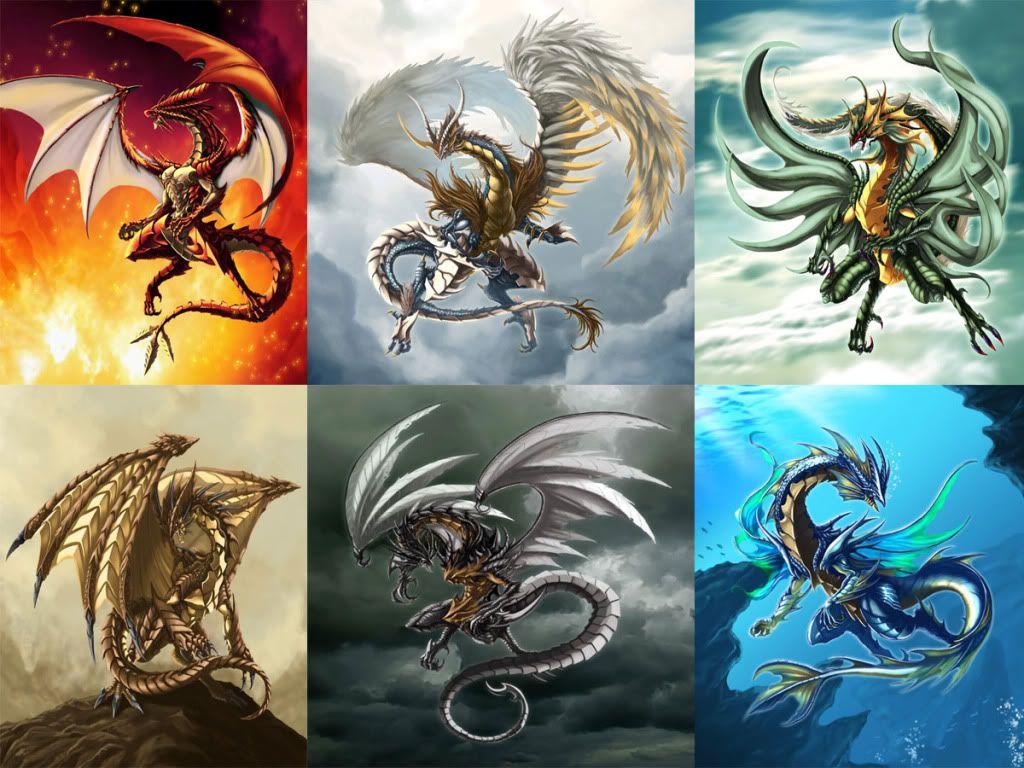 especies de dragões - Pesquisa Google