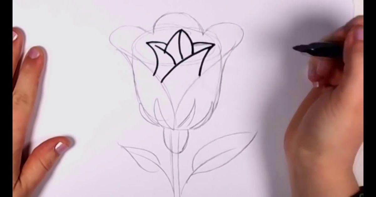 Baru 30 Gambar Bunga Untuk Digambar Di Buku Gambar Cara Mudah Menggambar Bunga Mawar Download 3 Cara Untu Gambar Bunga Mudah Menggambar Bunga Gambar Bunga