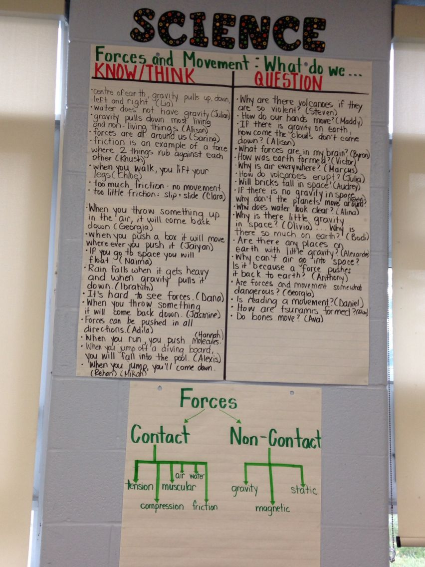 Grade 3  Forces And Movement