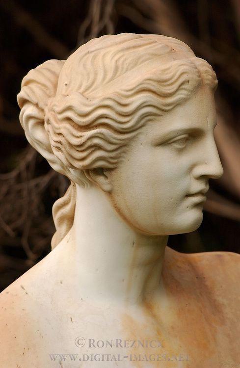 #sculpture #portrait #venus #milo #deVenus de Milo Sculpture portrait