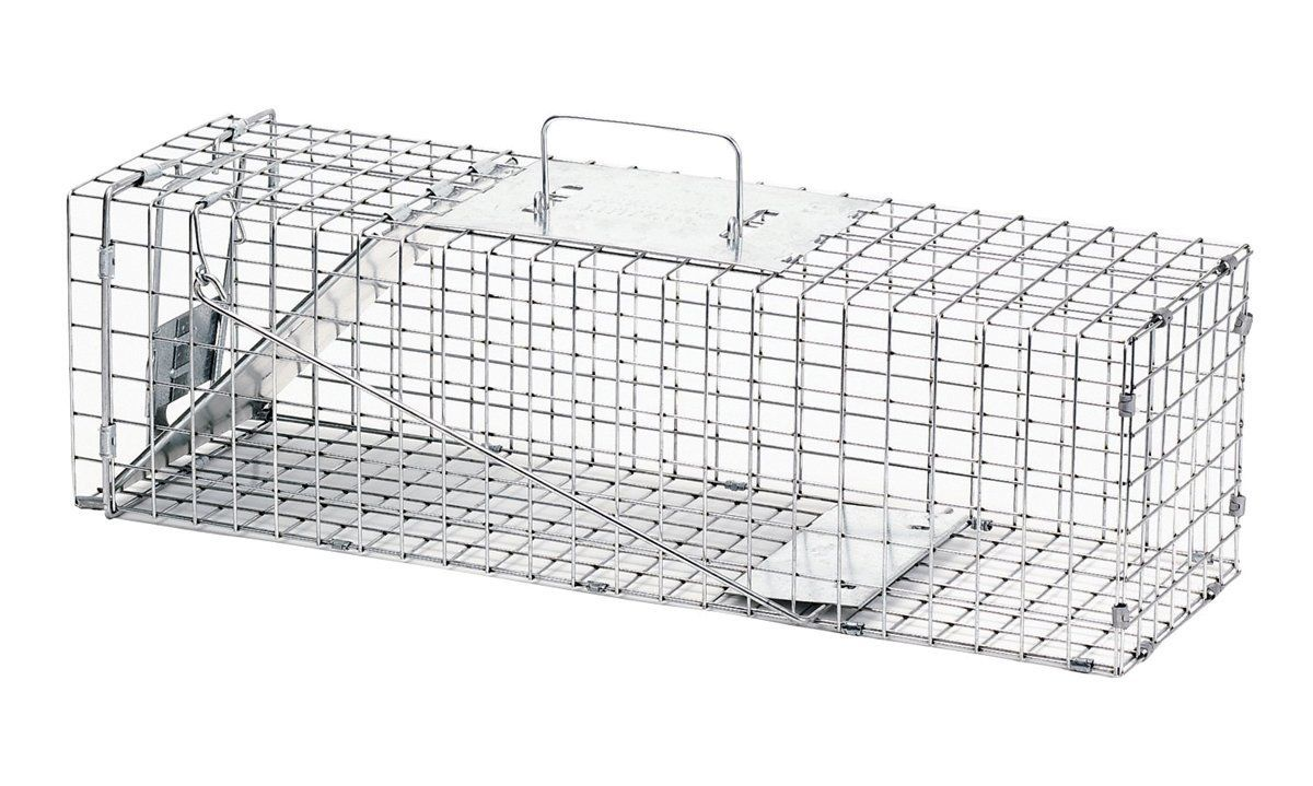 Havahart Medium Professional Style One-Door Animal Trap for Rabbit, Skunk, Mink, and Squirrel - 1078 ** Startling review available here  : home diy yard