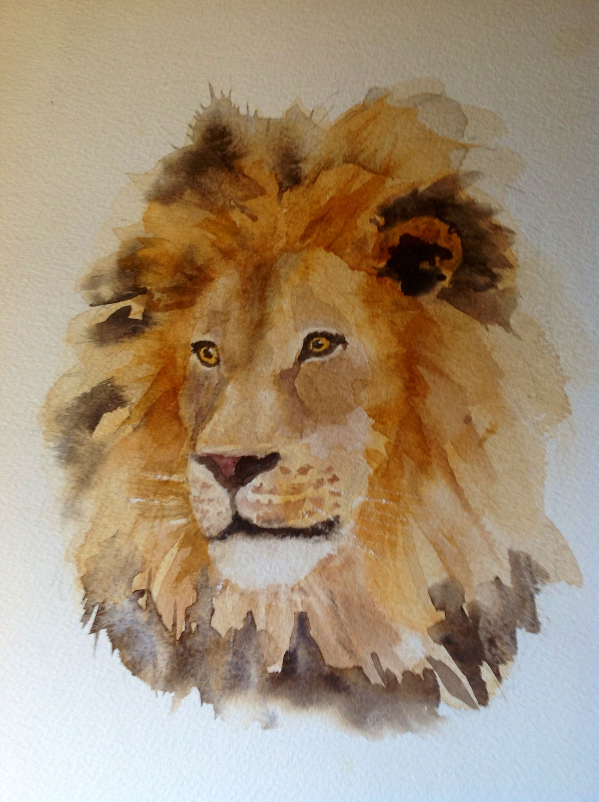 Lion In Watercolour By Lesley Hill Watercolor