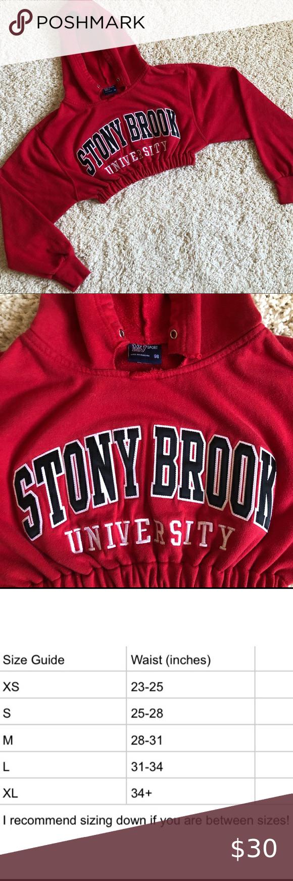 Stony Brook University Cropped Sweatshirt Hoodie Crop Sweatshirt Hoodie Crop Sweatshirt Sweatshirts Hoodie [ 1740 x 580 Pixel ]