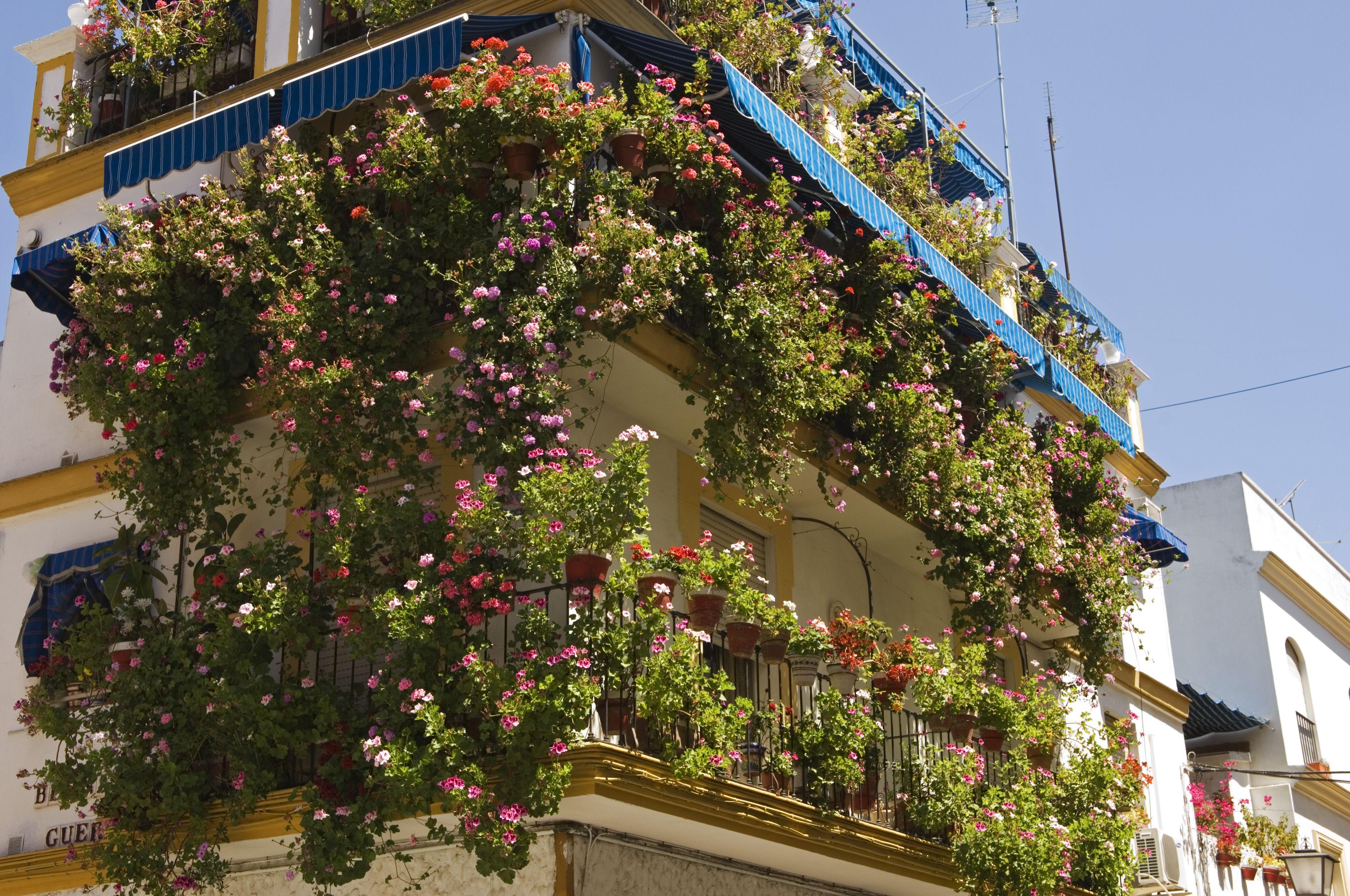 Beautiful Flower Gardens For Small Spaces In 2020 Gardening For Beginners Balcony Garden Urban Garden