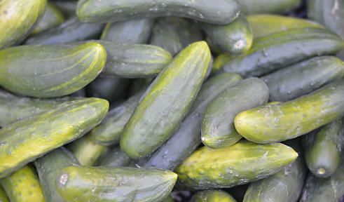 Watch out for dangerous ingredients in pickles and pickle juice - Chiropractic and Natural Health Centers | AlignLife