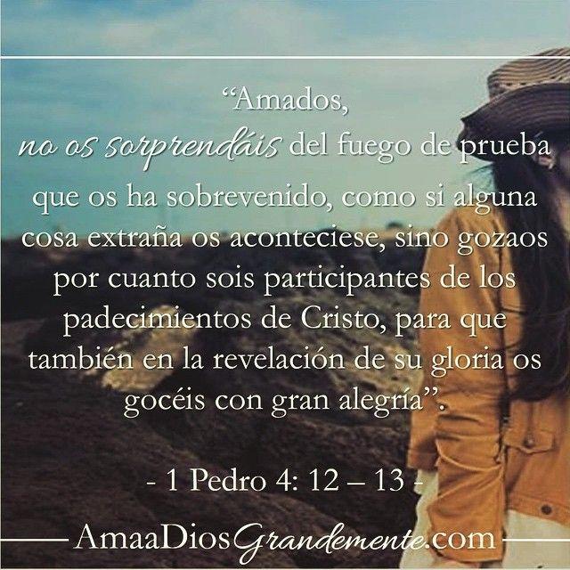 Armándonos Para La Vida Piadosa Fuera Lo Viejo Dentro Lo Nuevo Dios Te Ama La Biblia Dice Dios