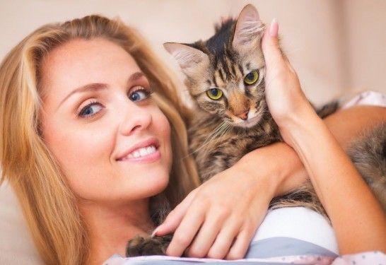 Vivir con gatos mejora tu corazón | EROSKI CONSUMER. Compartir la vida con felinos reduce al 40% el riesgo de morir de una enfermedad cardiaca, disminuye la presión sanguínea y ayuda a liberar estrés