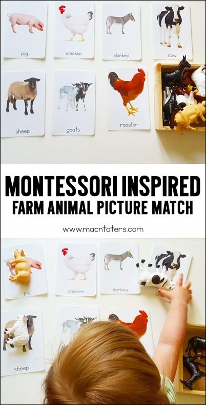 Montessori Inspired Farm Animal Picture Matching Activity: Find out what the pictures are made from.