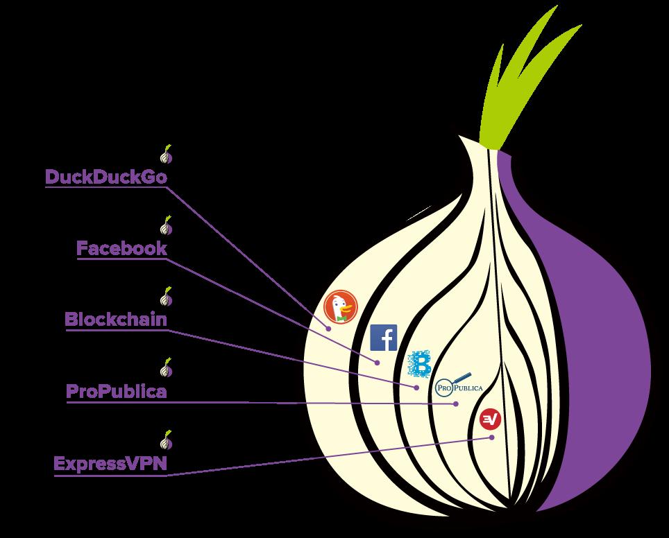 expressvpn-dark-web | Photos | Onion, Product launch, Technology