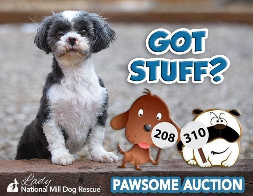 We Are Now Accepting Auction Items Our Pawsome Auction Is Now