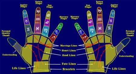 Palmistry - Wikipedia