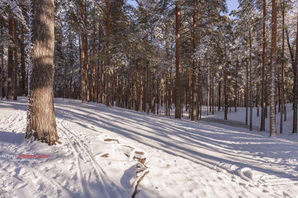 Зимний пейзаж на окраине города Дубна.Россия.(14)