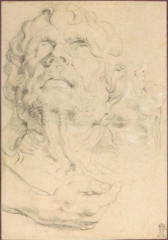 Pieter Paul Rubens Portrait Drawings Sheet Of Studies Head Of A Man Looking Up Hand And Lower Part Of A Head In Rubens Paintings Peter Paul Rubens Rubens