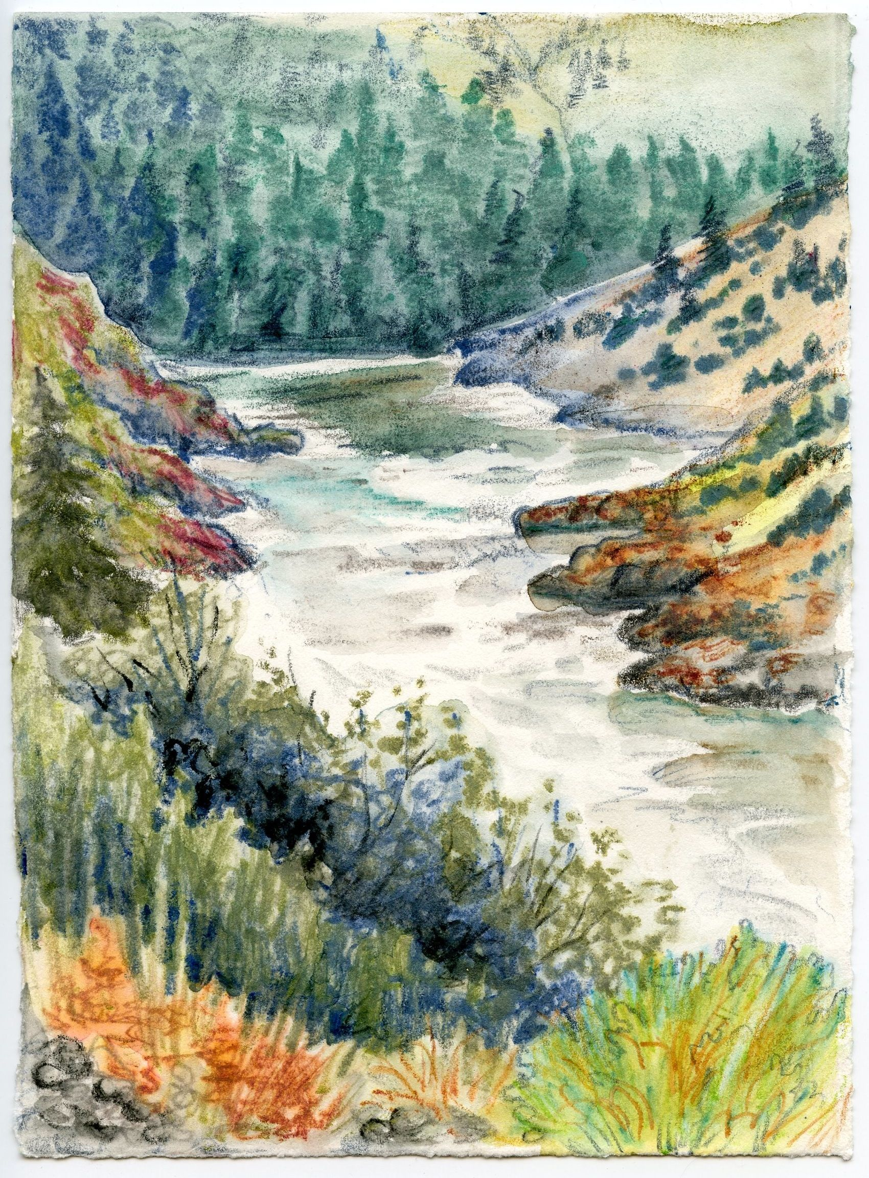 Technique Of The Week Watercolour Pencils Art Watercolor Art