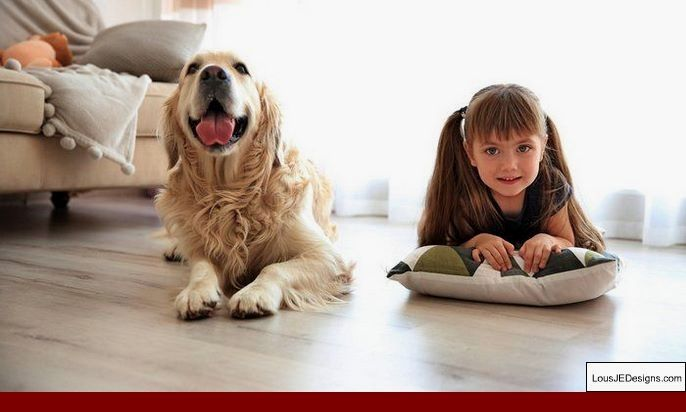 Tips For Potty Training A Rescue Dog And Pics Of Dog Training Tips For Australian Shepherds Tip 3026374 Dog Training Puppy Training Dogs