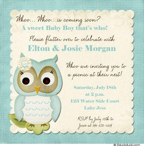 Picnic Owl Baby Boy Shower Invitation - Handwriting-Style Font