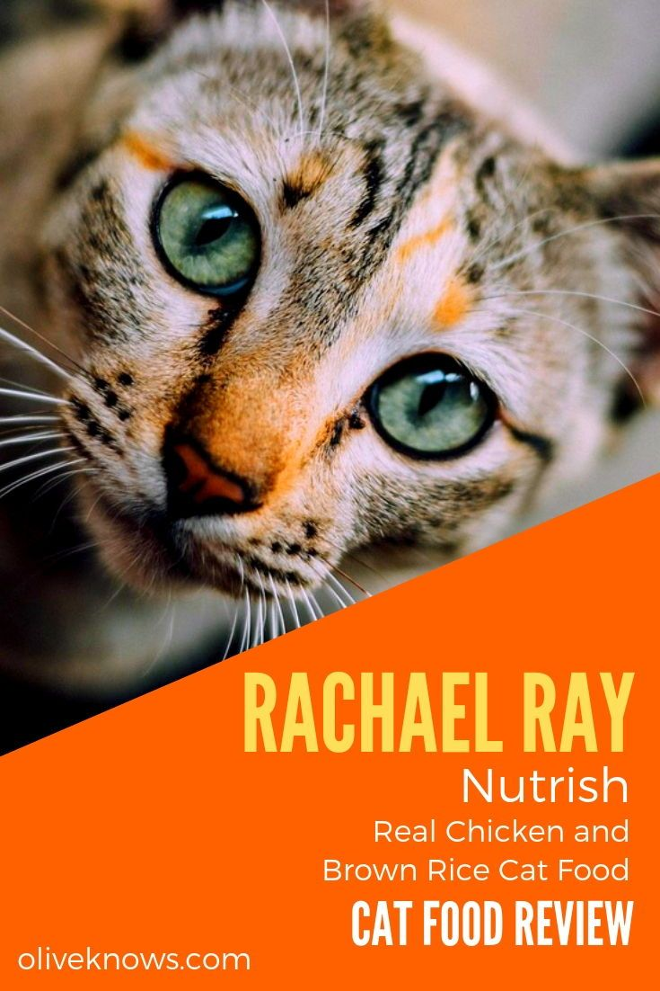 Rachael Ray Nutrish Real Chicken and Brown Rice Cat Food
