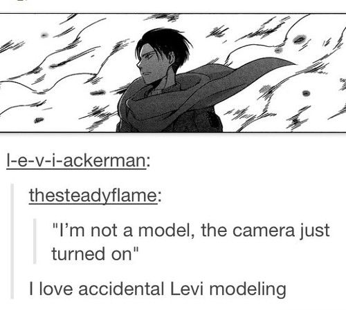 Haha Levi For America S Next Top Model Haha If He Was On I Would Totally Watch It And I Ve Attack On Titan Attack On Titan Anime Attack On Titan Funny