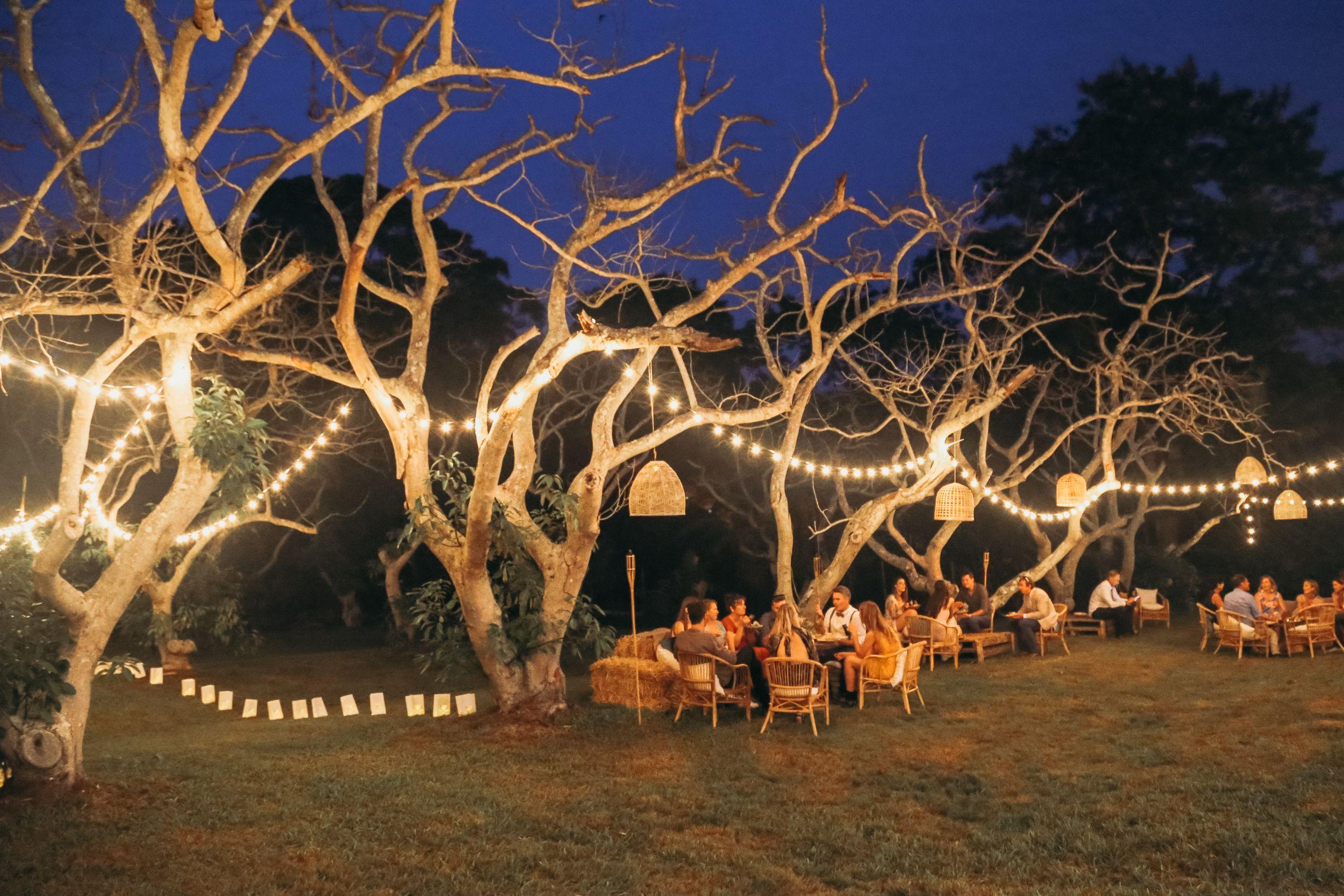 Tropical Orchard Wedding Byron Bay Orchard wedding