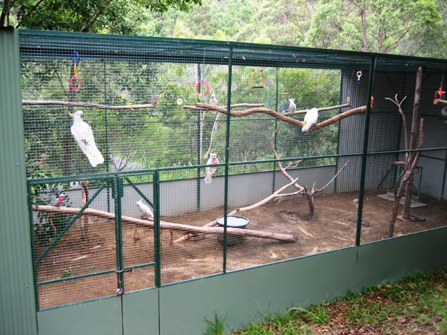 I Love This Aviary Design Ideas Around Nature