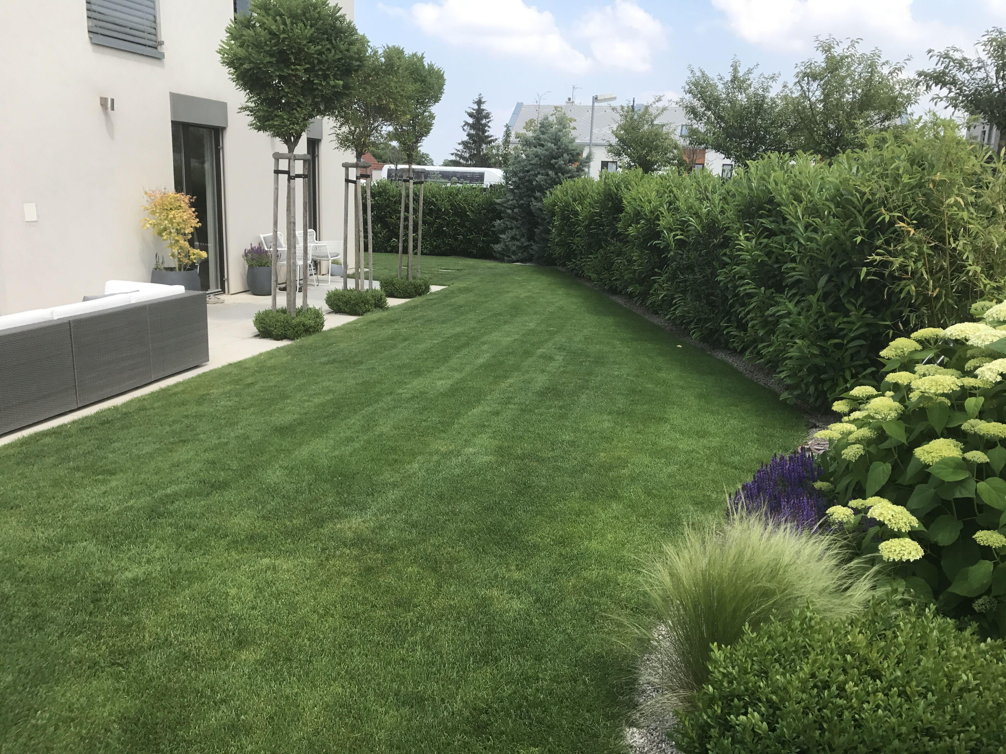 Modern Garden Design Garden Garden Garden Design Und Plants