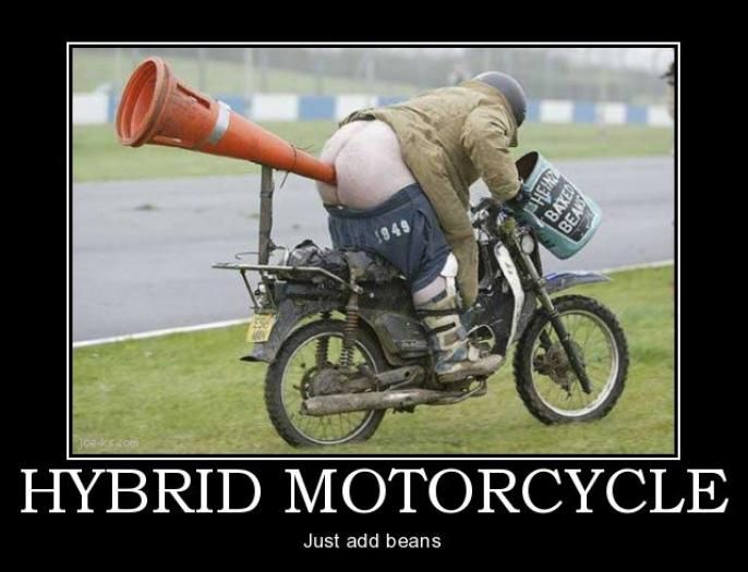 funny harley motorcycle pictures  Funny Harley-Davidson | Wicked Mean Bikes Motorcycle Memes Archives ...