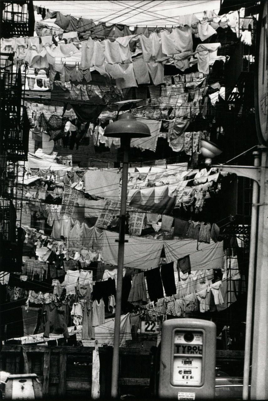 tartanspartan:liquidnight:   Elliott Erwitt - Hoboken, New Jersey, 1954From Elliott Erwitt - Personal Exposures