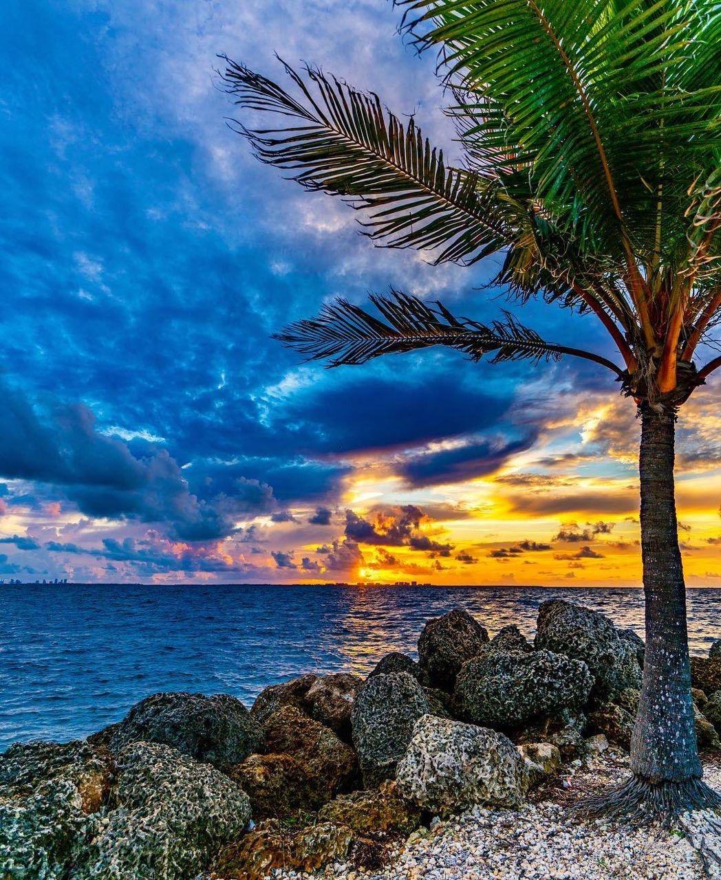 سحر الطبيعة Amazing Nature Nature Sunrise Sunset