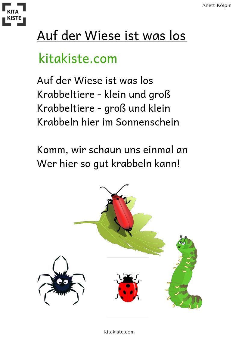 Photo of Reime – U3 – Kinderlieder für Kita & Krippe