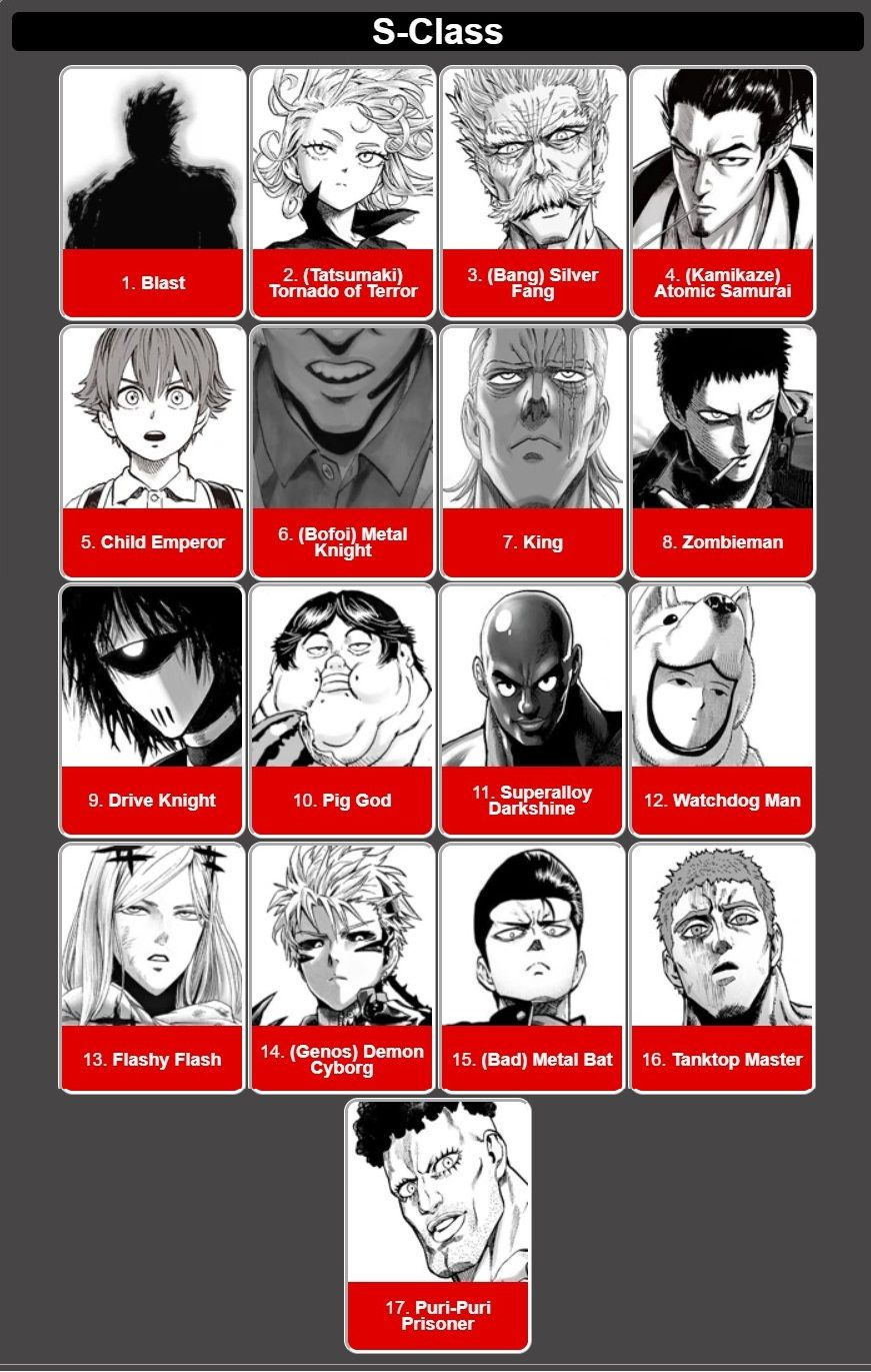 One Punch Man Classe S : punch, classe, Punch, S-Class, Heroes, Heroes,