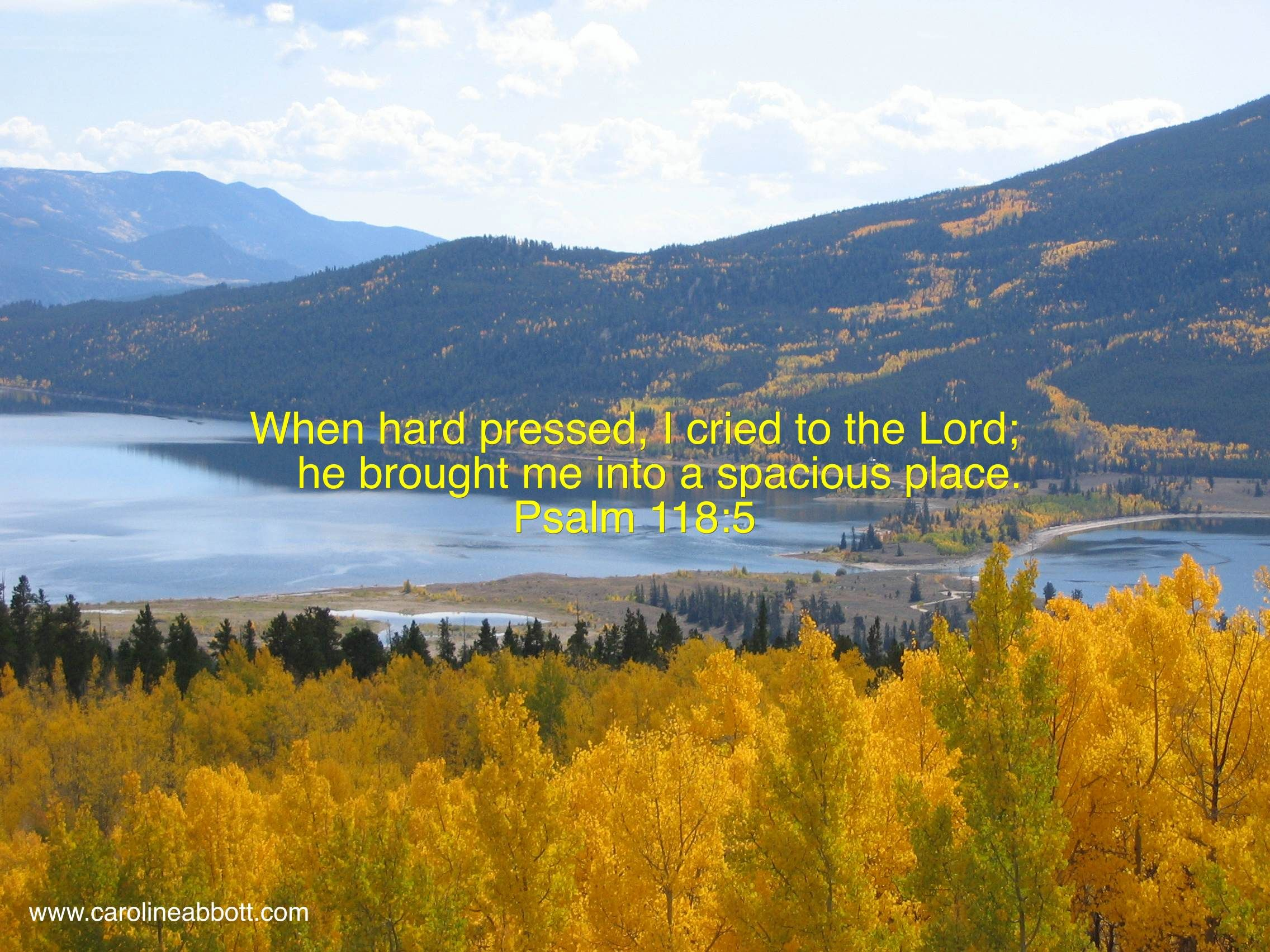 When hard pressed, I cried to the Lord, He brought me to a spacious place. Psalm 118:5