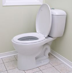 model toilets get rid of human waste and use less water than normal