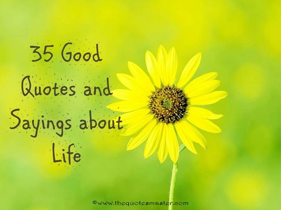 Compilation of 35 good quotes and sayings about life. By keeping this in mind, you are sure to attain happiness!