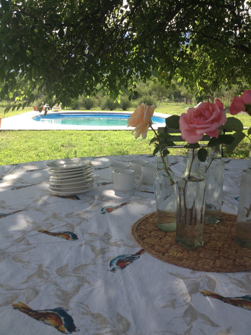 Five o'clock garden teatime.