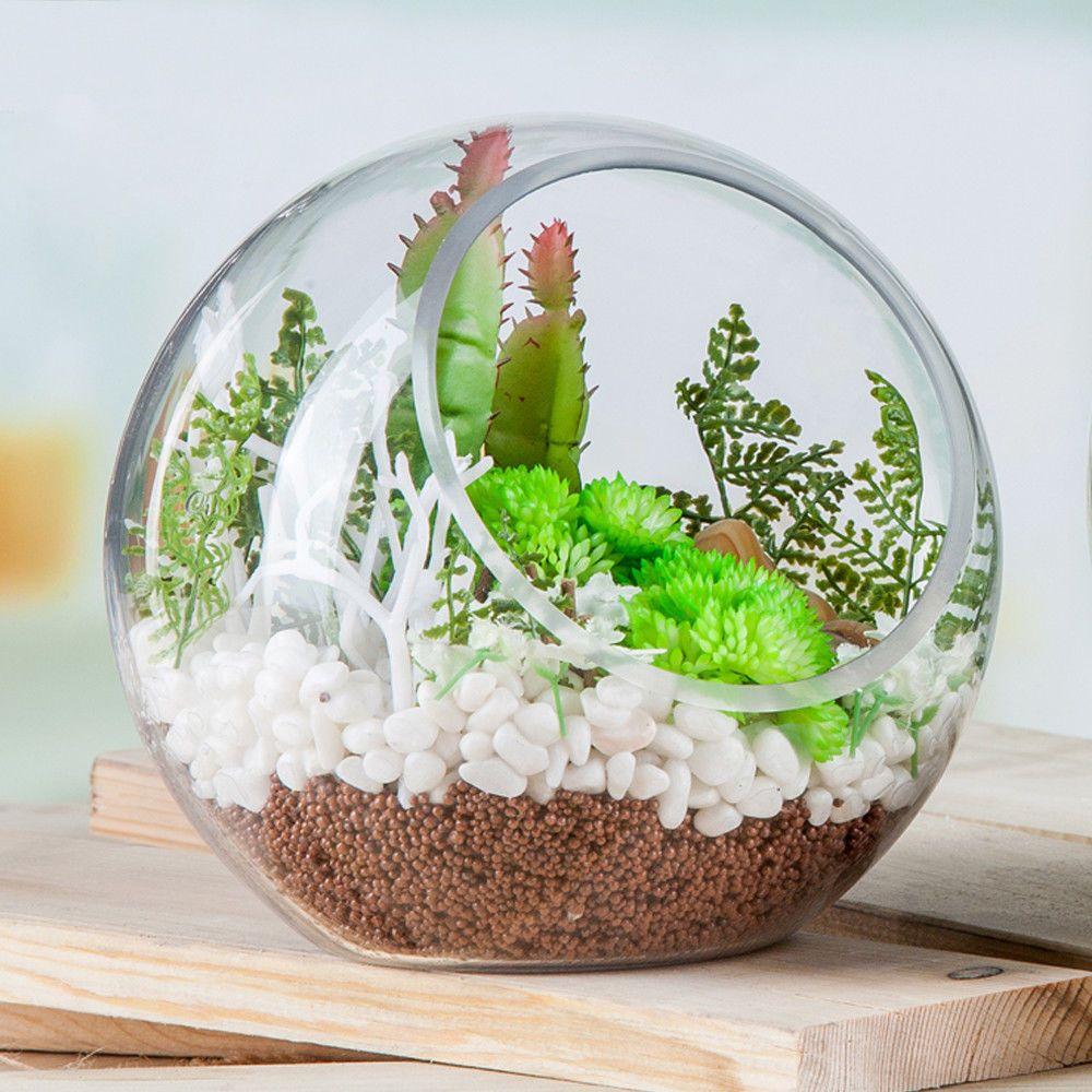 Globe glass ball planter vase flower plant pot terrarium container