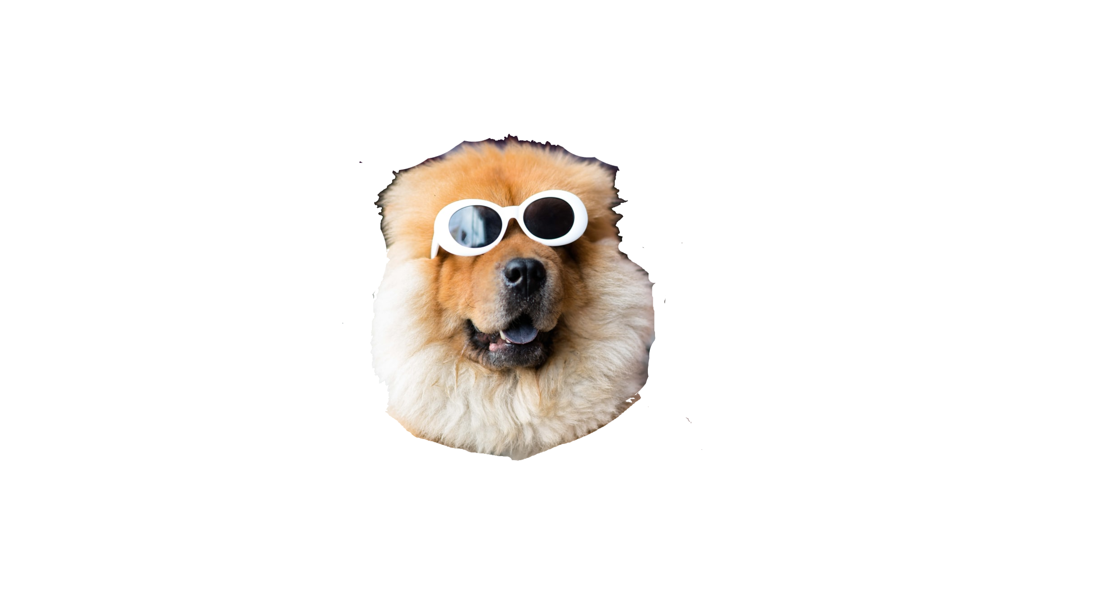 Cool Dog Sticker By Danielasdesigns Dog Stickers Red Bubble Stickers Best Dogs