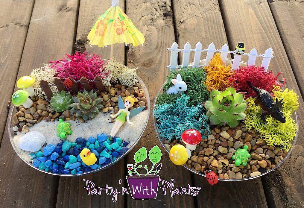 Fairy Garden Kit, Succulent, Succulent Fairy Garden, Fairy Garden Party, Fairy Craft, Fairy Garden B is part of Succulent garden Fairy - partynwithplants