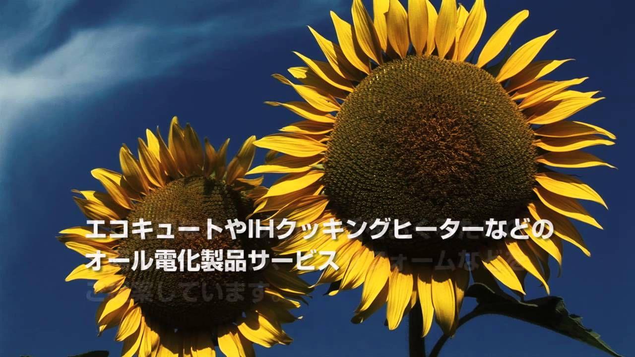 三菱エコバンク http://ecogoodpoint.tumblr.com/