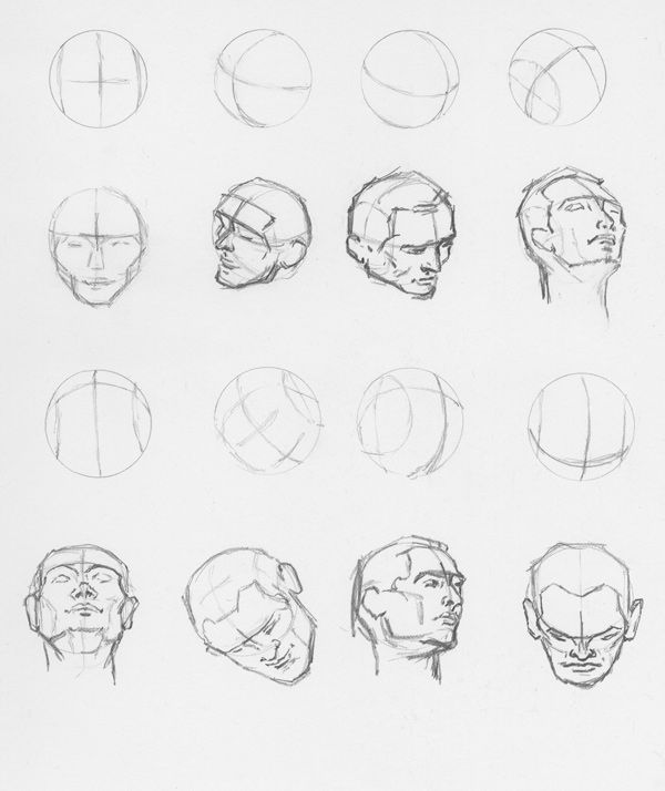 Right Brain Draw Sphere Form Of The Human Head At Various Angles Human Head Brain Drawing Human Anatomy Drawing