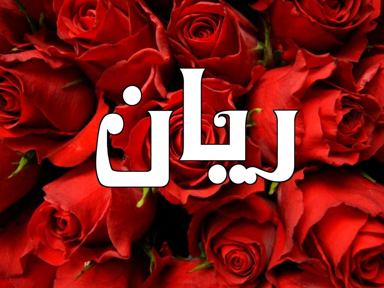 تعرف على كل دلالات ومعنى اسم ريان Rayan وأهم صفاتها موقع مصري In 2021 Neon Signs Flowers Rose